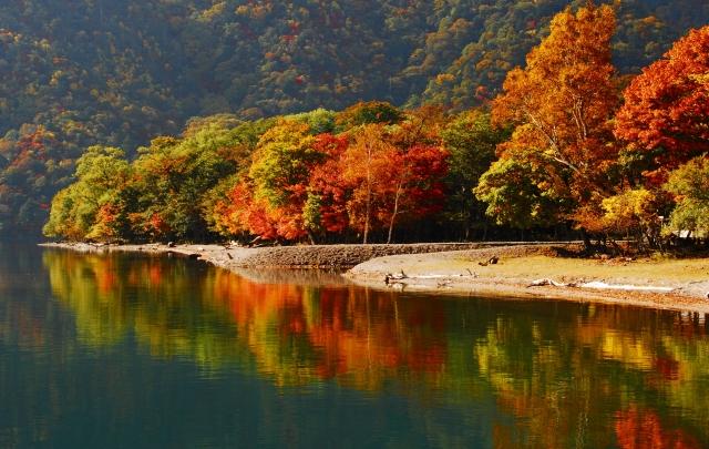 日光の秋.jpg
