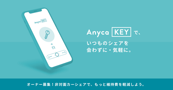 Anyca_key.png