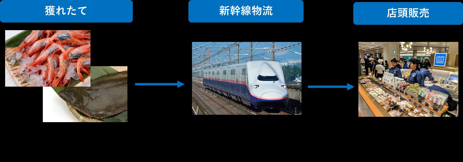 shinkansen_sengyo.png