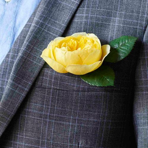 suit_flower.png