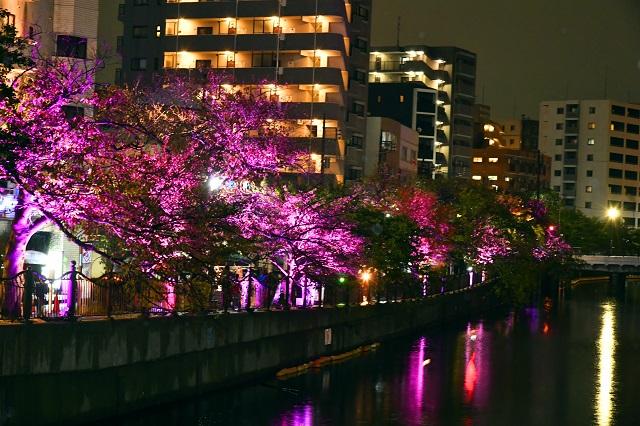 Yokohama_hikari1.jpg